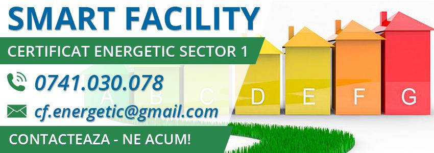 audit energetic sector 1